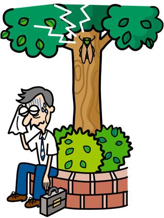 夏バテは、食欲不振から来る栄養不足や、熱帯夜が原因の睡眠不足が原因と考... 人生を前向にするシ