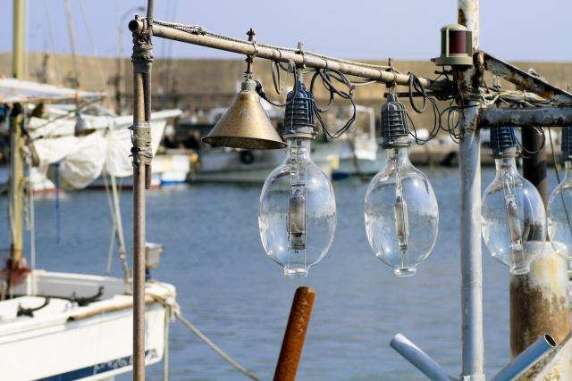 イカ釣り漁師に転職