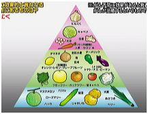 piramid_ninniku